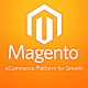 magento-web-developers-designers-pos-erp-integration