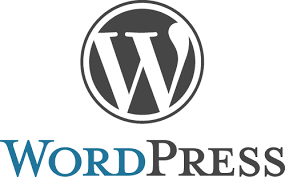 wordpress website design developers