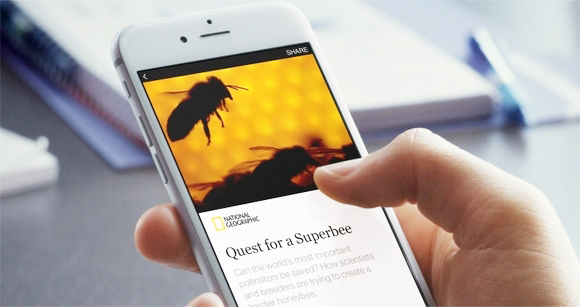 Carousel Creative GIFS and instant articles